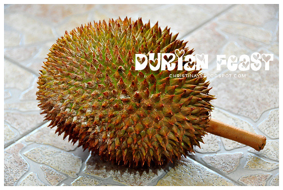 Durian Feast in Hometown