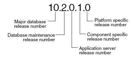 oracle_release_number