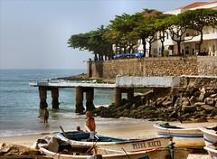 PEIXE XICO (Marcia Rosa ()) Tags: sea tree praia beach brasil riodejaneiro landscape boat mar barco marcia rosa paisagem unesco copacabana worldheritage patrimniomundial rio20 rvcore