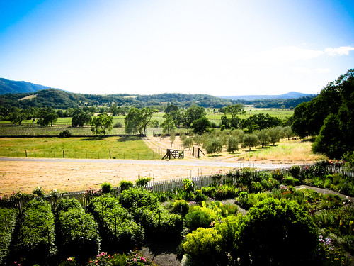Sonoma Wine Country - Beltane Ranch, Glen Ellen