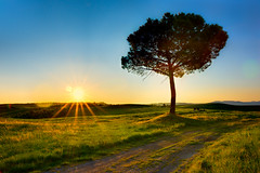 The sun rises over Pienza (Thierry Hennet) Tags: morning blue italy orange sun tree green grass zeiss sunrise landscape gold golden soleil spring italia sony scenic sunny hills tuscany rays pienza toscana crépuscule arbre sunbeam clearsky tranquilscene aube traveldestinations a900 cz2470mmf28