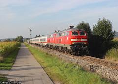 DB 218 487 & 218 494, Bad Grnenbach 22.09.2016 (Trainspotting-Wiki) Tags: 218 487 494 bad grnenbach magdeburg oberstdorf ic 2012 2013 ulm immenstadt
