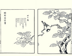 Camellia and great tit by Naonobu Kano (1607-1650) (Japanese Flower and Bird Art) Tags: flower camellia japonica theaceae bird great tit parus major paridae naonobu kano settei tsukioka woodblock picture book japan japanese art readercollection