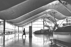 La azafata (fotodiegoFL) Tags: azafata m3 iii rx100 sony blackandawhite bw blancoynegro madrid aeropuertot4