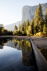 El Capitan (Kevin Dinkel) Tags: wander landscape sunset beaitufl national water trunk cliff outdoor awe fall river light reflection trees calm elcapitan serene yosemite travel symmetry hiking trail beautiful park wonder bridge autum valley