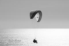 IMG_307_Paraglider_201103