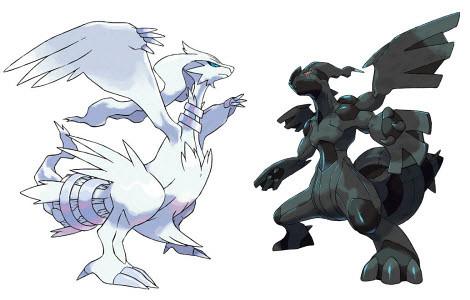 Pokemon Black and White Beginner's Guide