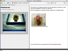 Fleshserver: screenshot