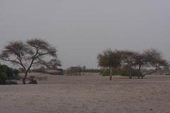 West Africa-5321
