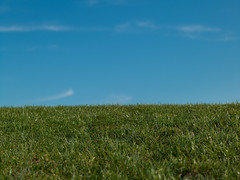 Green Grass and Sky Background (BillChristian) Tags: sky green grass background flickrstock