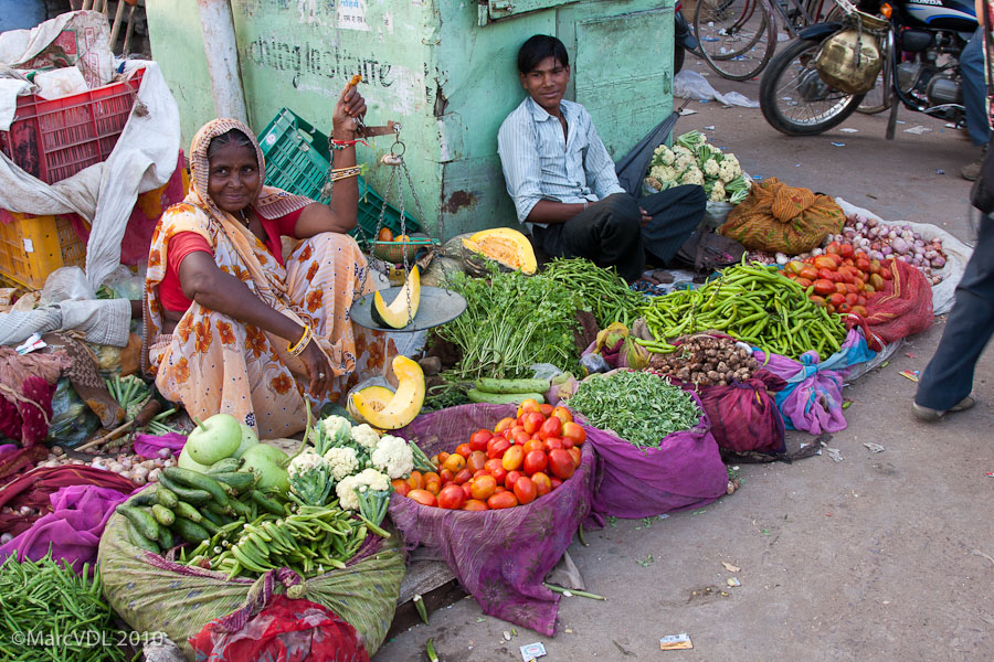 Rajasthan 2010 - Voyage au pays des Maharadjas - 2ème Partie 5598384037_d7d01ed5cb_o