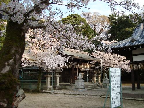 2011/04 許波多神社 #03
