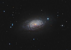 Sunflower Galaxy (M 63) (GLMandell) Tags: deepspace competition:astrophoto=2010 roboticscope competition:astrophoto=2011