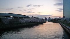 夕日を背に大坂城ホール