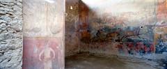 """Jardn, Casa Ceii, Pompeya (Obra Social Fundacin """"laCaixa"""") Tags: rome roma archaeology museum museo pompeya ostia exposicion arqueologa herculano lacaixa imperioromano yacimiento antiguaroma obrasocial arquitecturaclasica ciudadromana romanorumvita vidaromana jardindomus viviendainterior"""