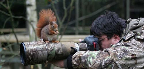 Photography at the BWC
