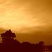 Sunrise #5