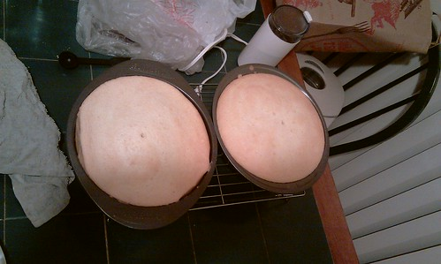 sponge cakes (cooling and getting ready for the fridge)