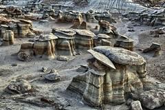 Bisti Badllands Hoodoos and Mushrooms (Ken'sKam) Tags: usa newmexico nature mushrooms hoodoo badlands geology hoodoos southwestern bisti bistibadlands westernusa mushroomrocks