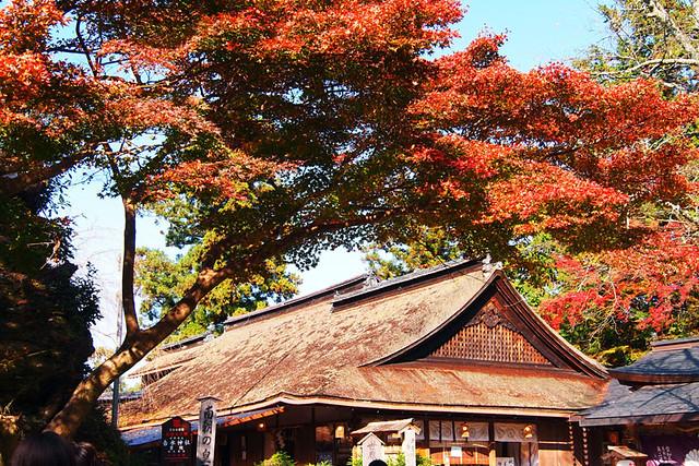 20101120_131616_吉野山_吉水神社_拝殿