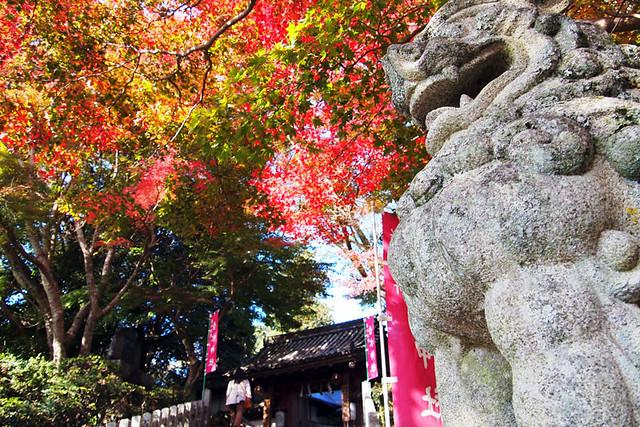 20101120_131416_吉野山_吉水神社