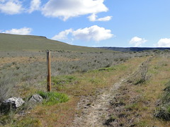 One of many trail marker poles on Yakima Skyline trail.
