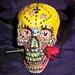 Hand Painted Skulls