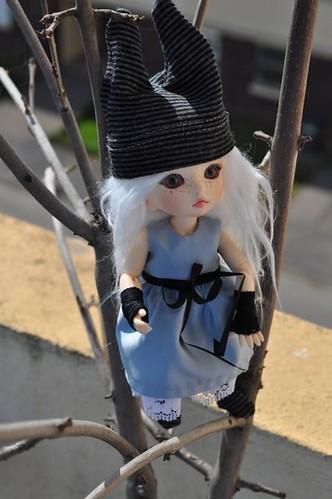 Judy (Pukifée Luna) nouveau visage. 5643140664_8b17eb9b3d