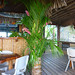 Palm Frond Decorations at the Bar, Huahine