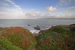 Seal Rock Beach (Bruce Bordelon) Tags: ocean california morning light cliff beach rock sunrise coast nikon san francisco rocks waves view angle pacific district wide panoramic seal sutro nikkor f28 d700 1424mm