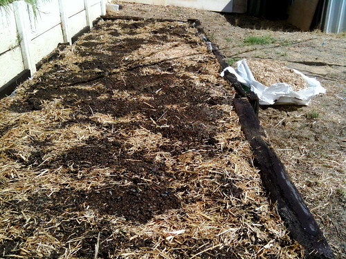 Raised garden bed - no-dig