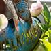 Turquoise (Explore)