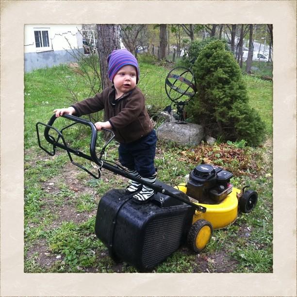 Olle lär sig gräsklipparens funktioner