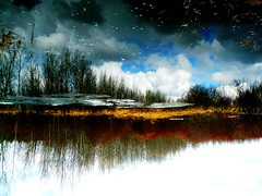 Water Art: Springtime layers in an upside down world (peggyhr) Tags: blue trees friends light sky brown white snow canada black ice water dedication clouds reflections grey amber rust debris silhouettes alberta showroom wetlands ochre slough shrubs soe dda pussywillows musictomyeyes specks 50faves redwillows driedgrasses flippedreflection peaceaward peggyhr flickrbronzeaward heartawards bluebirdestates vanagram 100commentgroup doubledragonawards dragondaggeraward flickraward creativeyeuniverse naturesprime postthebest mygearandme lomejordemisamigos nossasvidasnossomundoourlifeourworld level1photographyforrecreation blinkagainforinterestingimages p1280068bp