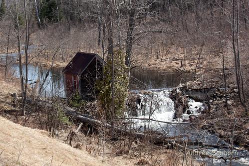 Beaver Pond 5 (41 of 45).jpg