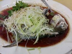 Stemed sea bream from Chuen Kee Seafood Restaurant @ Sai Kung (Fuyuhiko) Tags: from sea hk hongkong restaurant hong kong seafood kung  bream sai kee stemed chuen   flickroid