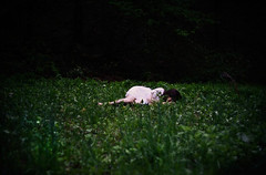 band of horses (londonscene) Tags: horses white girl grass forest canon 50mm for sale sleep dream band prints 365
