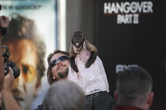 Crystal the monkey in her pink gown greets the army of media (kjdrill) Tags: california justin usa mike zach movie ed paul losangeles tyson ken bradley hollywood cooper premiere blvd helms 1202 giamatti bartha jeong galifiankis hangoverpart2 monkeythailandfilmcomedyfunny