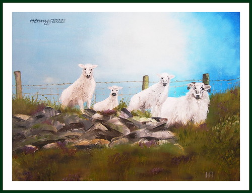 painting sheeps by Henny Aarts