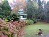 autumn at the Gorge (jeaniephelan) Tags: gorge launceston firstbasin