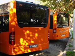 Mercedes o530 citaro o345 conecto busse sofia bulgarien 530 345