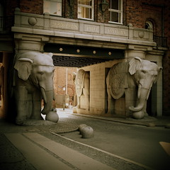Elefanti (Stefano Giulidori) Tags: ny pen lumix olympus elephants pancake mm 20 carlsberg stefano ep2 copenaghen elefanti kbenhav giulidori
