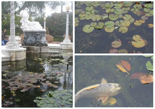 hearst pond