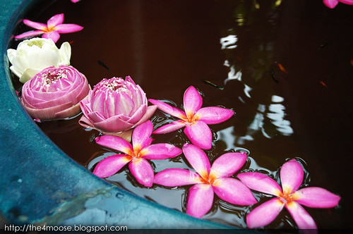 Jim Thompson House Museum - Flowers