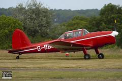 G-BBMZ - C1 0563 - G-BBMZ Chipmunk Syndicate - De Havilland DHC-1 Chipmunk 22 - Panshanger - 110522 - Steven Gray - IMG_6425