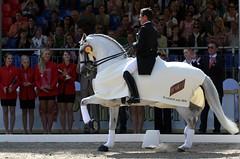 Juan Manuel Munoz Diaz, Fuego de Cardenas (mrs.flax) Tags: horses wiesbaden grandprix schloss pferde biebrich dressage dressur pfingstturnier henkelltrockenpreis juanmanuelmunozdiaz fuegodecardenas