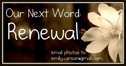Next Word, Renewal