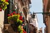 The Last of Venice (LenDog64) Tags: flowers venice windows italy architecture europe sony may alpha 700 tamron lightroom 2011 a700 tamronlens tamron1750 tamronspaf1750mmf28xrdiiildasphericalif lightroom3 sonya700 sonyalpha700 sony700
