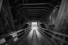 Saying Nothing, That's Enough for Me (Thomas Hawk) Tags: america bertasranchcoveredbridge california eureka humboldtcounty northerncalifornia usa unitedstates unitedstatesofamerica bridge bw coveredbridge fav10 fav25 fav50
