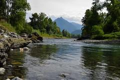 Le Gave de Pau (Mystycat =^..^=) Tags: hautespyrnes midipyrnes france gavedepau 65 montagne rochers rivire arbres eau gave argelsgazost